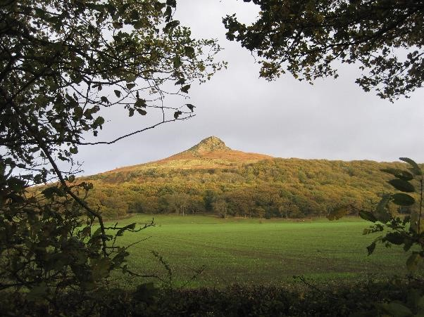Outdoor Society's Week 4 Walk: Roseberry Topping