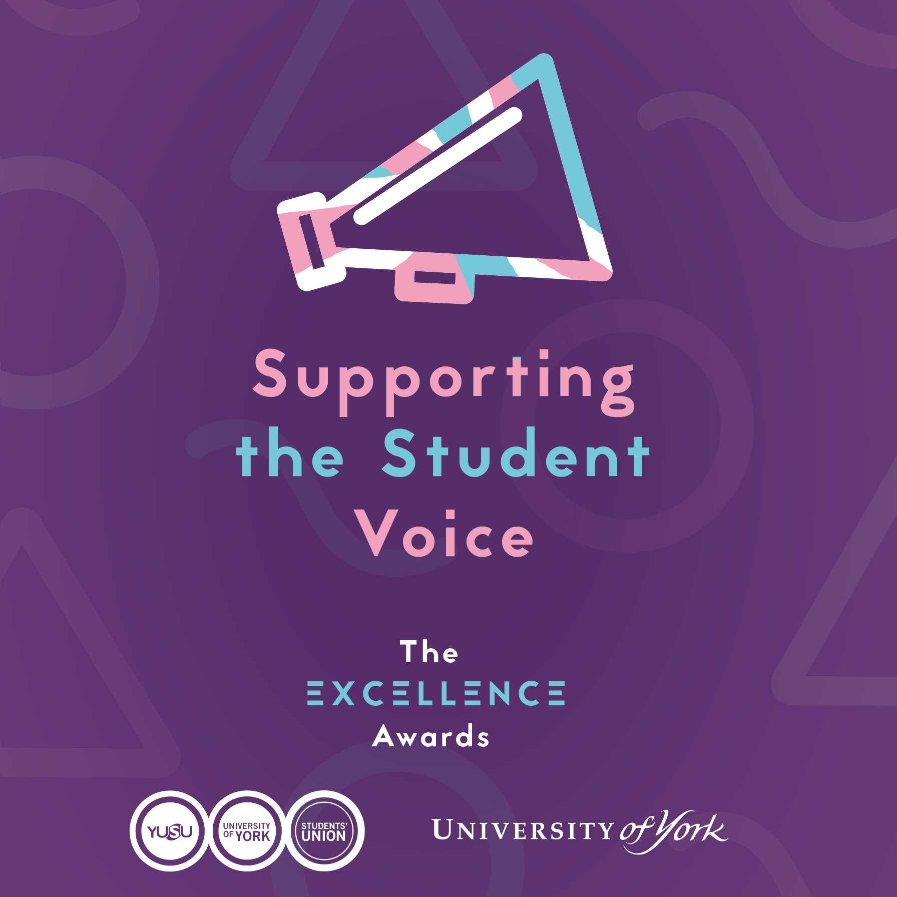 Supporting the Student Voice