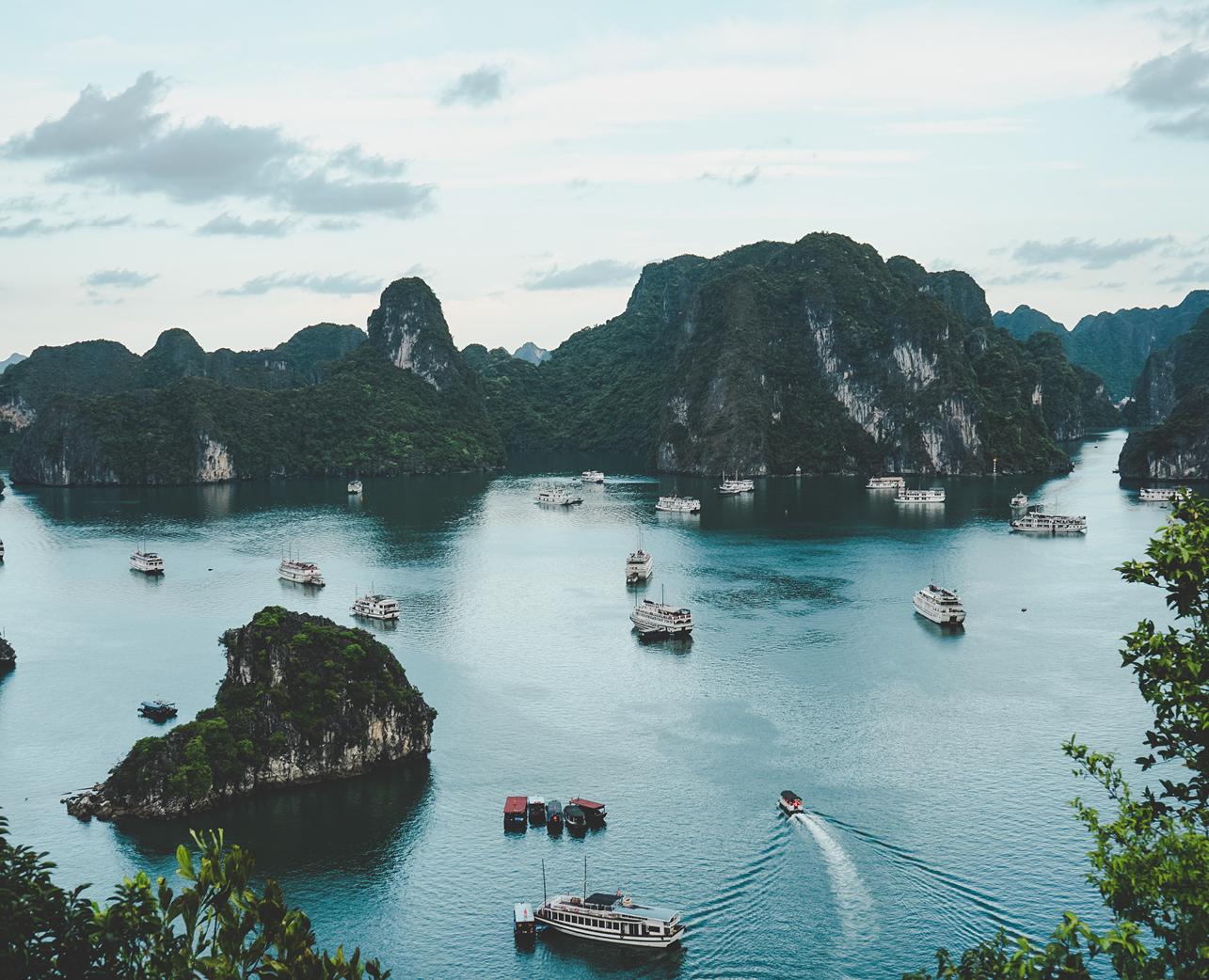 Vietnamese Society