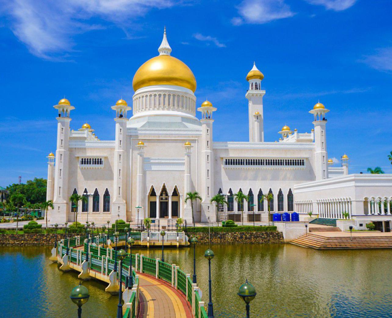 Brunei Society (BruYork)