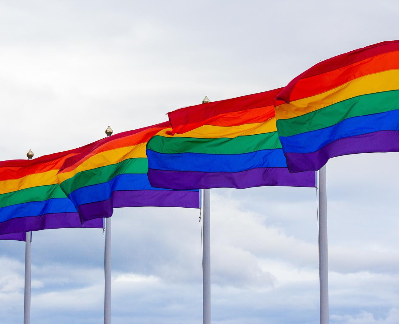 LGBTQ Social