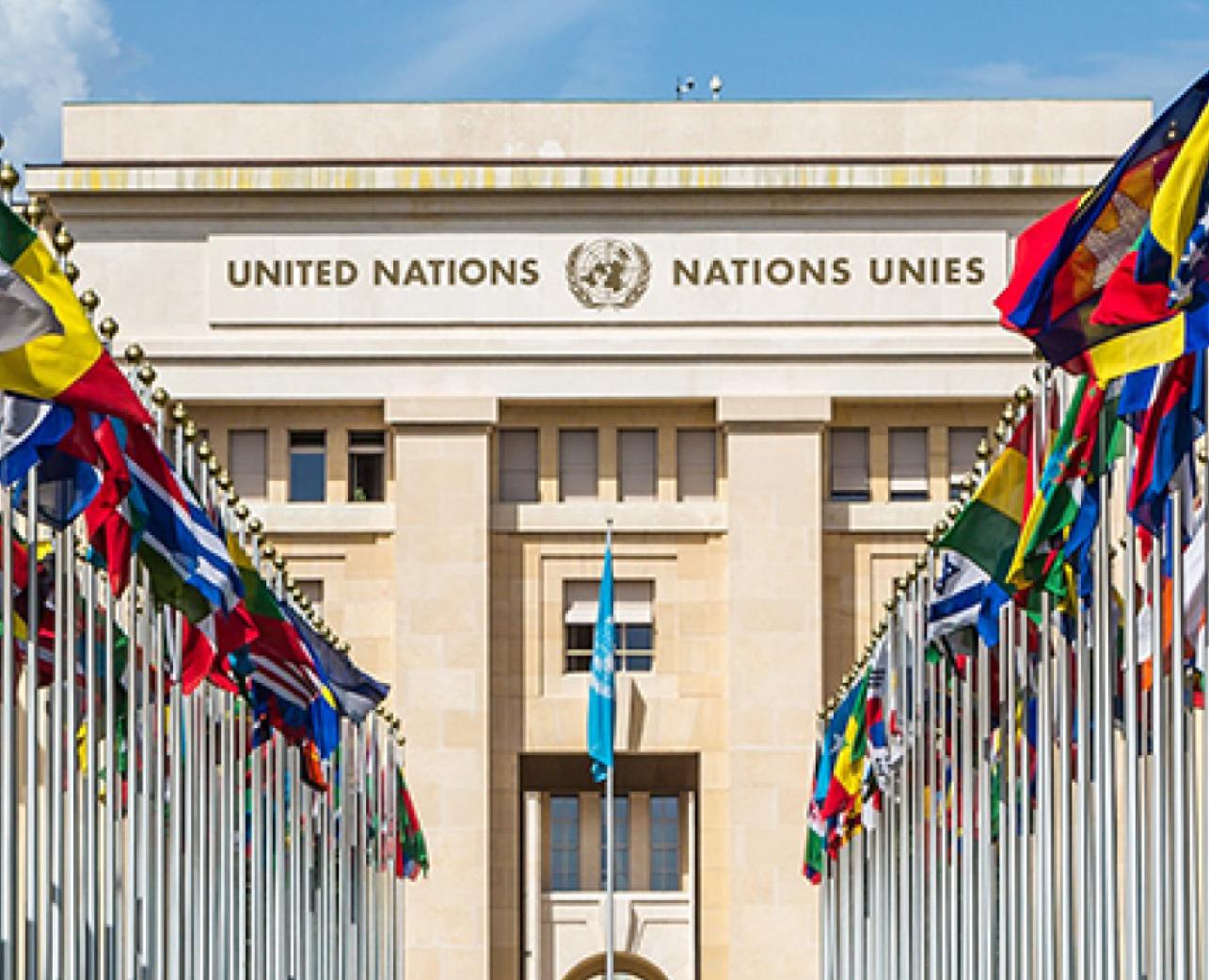 United Nations Association (UNA)